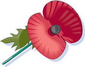 UK Remembrance day poppy icon infographic