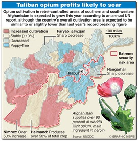 AFGHANISTAN: Opium cultivation infographic