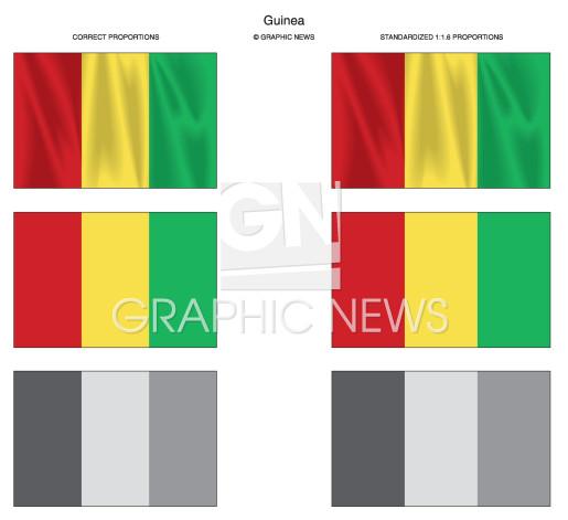Guinea infographic
