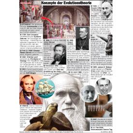 Konzepte der Evolutionstheorie infographic