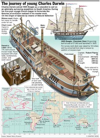 DARWIN: Voyage of the Beagle infographic