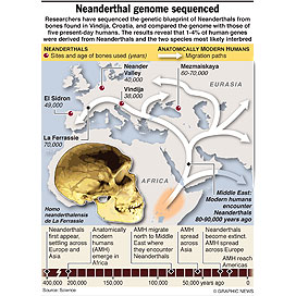Neanderthal genome sequenced infographic