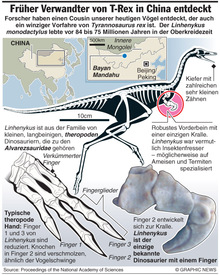 Vogelartiger Dinosaurier in China gefunden  infographic