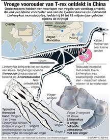 WETENSCHAP: Vroege voorouder van T-rex ontdekt in China  infographic