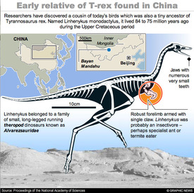 SCIENCE: Early relative of T-rex interactive infographic