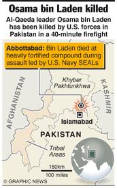 AL QAEDA: Osama bin Laden killed infographic