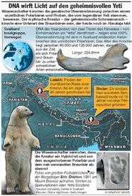 WISSENSCHAFT: DNA wirft Licht auf Yeti Sichtungen infographic