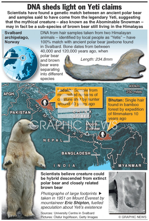 DNA sheds light on Yeti claims (1) infographic