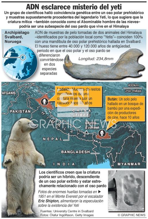 El ADN esclarece el misterio del yeti (1) infographic