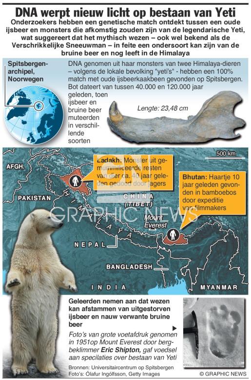 DNA werpt nieuw licht op bestaan Yeti (1) infographic