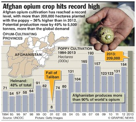 AFGHANISTAN: Opium crop at record high infographic