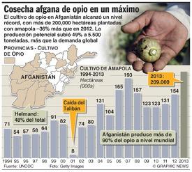 AFGANISTÁN: Cosecha de opio en máximo récord infographic