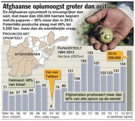 AFGHANISTAN: Opiumoogst groter dan ooit infographic