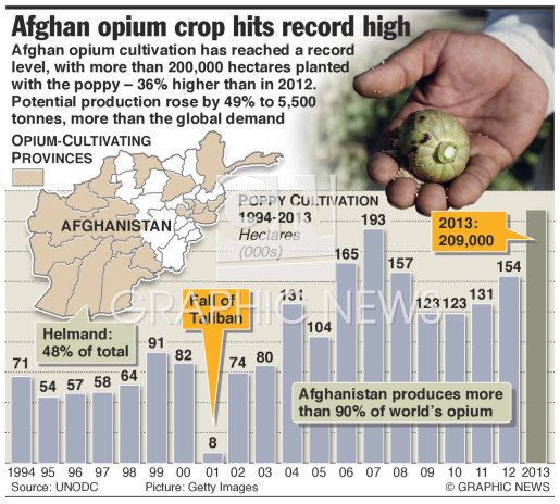 Opium crop at record high infographic