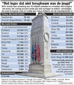 HERDENKING WO I: De prijs van de Eerste Wereldoorlog (1) infographic