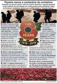 CENTENÁRIO DA I GUERRA MUNDIAL: A papoila e o Dia da Lembrança (1) infographic