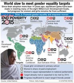 UN: Progress towards gender equality infographic