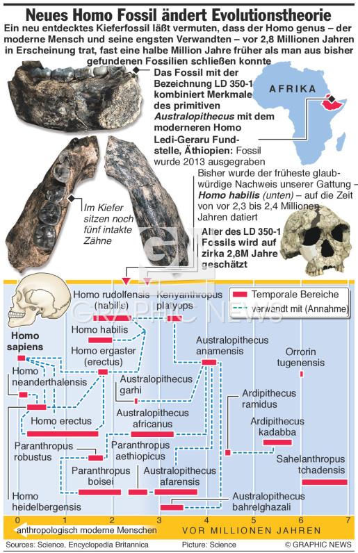 Neues Homo Fossil könnte Evolutionstheorie des Menschen ändern infographic