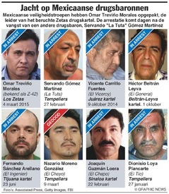 MEXICO: Jacht op drugsbaronnen infographic