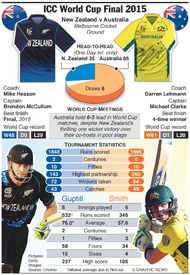 CRICKET: World Cup Final 2015 infographic