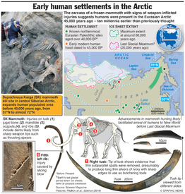 SCIENCE: Early Arctic human settlements infographic