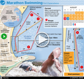 RIO 2016: Olympic Marathon Swimming interactive infographic