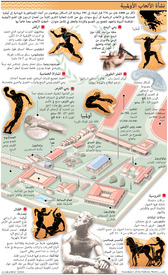RIO 2016: Origins of the Olympic Games infographic