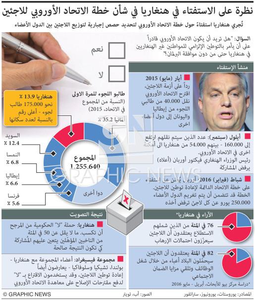 Refugee referendum factbox infographic