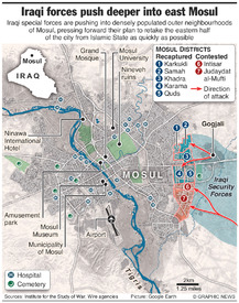 IRAQ: Iraqi forces push deeper into east Mosul infographic