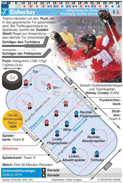 Eishockey infographic