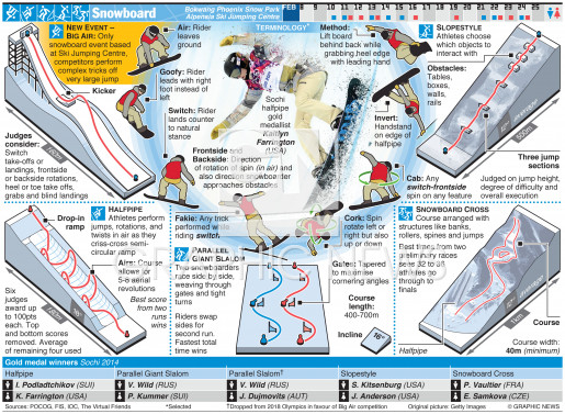 Snowboard infographic