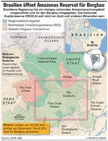 BRASILIEN: RENCA Amazonas Regenwald Reservat infographic