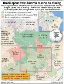 BRAZIL: RENCA Amazon rainforest reserve infographic