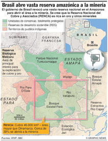 BRASIL: Reserva de bosque tropical RENCA en el Amazonas infographic