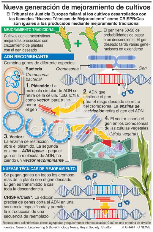 Nueva generación de mejoramiento de cultivos infographic