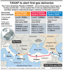 ENERGY: TANAP gas pipeline infographic