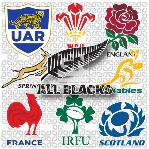 Rugby World Cup 2019 team crests (1) infographic