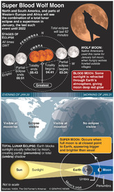 SPACE: Super Blood Wolf Moon eclipse infographic