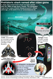 SCIENCE: Prehistoric shark named after video game infographic