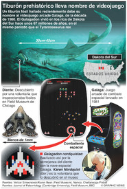 CIENCIA: Tiburón prehistórico nombrado por un videojuego infographic