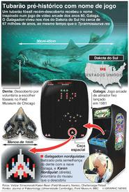 CIÊNCIA: Tubarão pré-histórico com nome de jogo de vídeo infographic