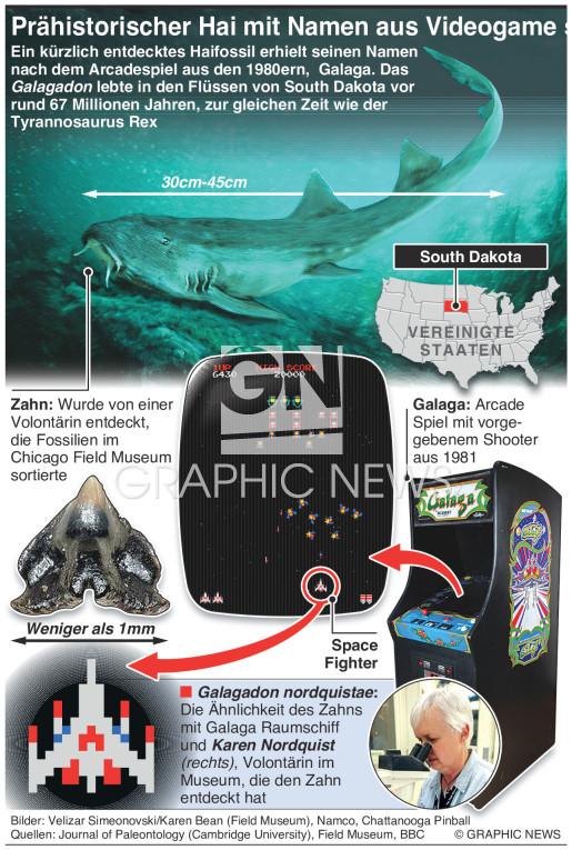 Prähistorischer Hai wird nach Videospiel benannt infographic