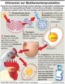 WISSENSCHAFT: Hühnereier werden zu Medikamentenproduzenten infographic