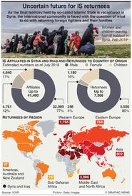 TERRORISM: Islamic State returnees infographic