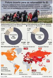 TERRORISMO: Retornados do Estado Islâmico infographic