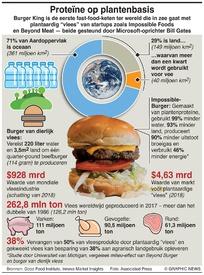 WETENSCHAP: Plantaardige proteïne infographic