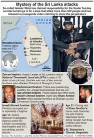 TERRORISM: Sri Lanka attacks factbox infographic