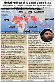 TERRORISM: Remaining IS threat infographic