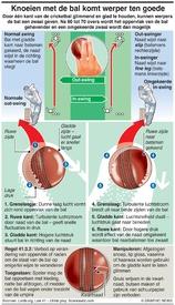 CRICKET: World Cup knoeien met de bal infographic