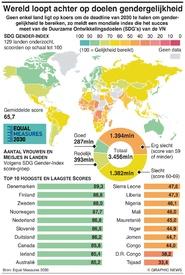 GENDERGELIJKHEID: Wereld loopt achter op doelen voor 2030 targets infographic